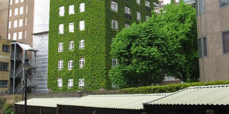 It is projected that all new buildings will be green buildings by 2030. Green buildings have...