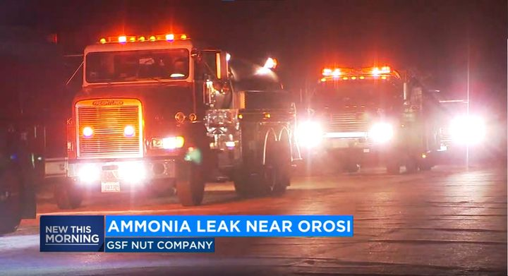 Fire trucks wait Thursday morning near Orosi, California, as the source of leaking ammonia is traced. - Screencapture Via KFSN