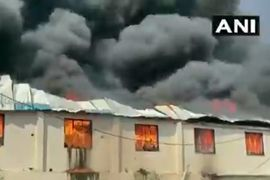 Flames Gut Plastics Manufacturing Plant in India