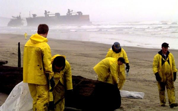 Cleanup teams scour the beach for any oil that has leaked from the grounded freighter.
