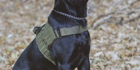 Voodoo Tactical: Optimized K-9 Protection