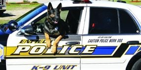How To Retire a Police K-9