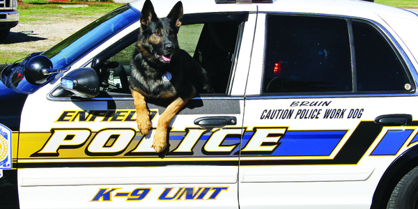 Agencies that field K-9 units need to plan for how the dogs will be cared for after they have...