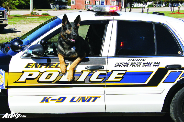How To Retire a Police K-9 - Special Units - POLICE Magazine