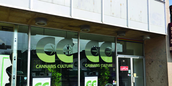 Legal marijuana outlets are often targeted by criminals because the stores do cash business...