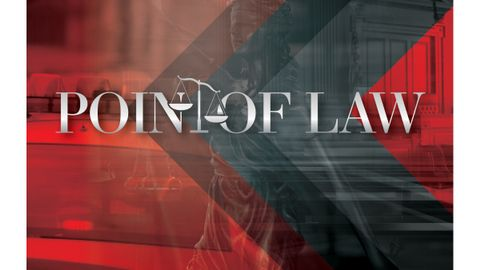 Point of Law: Excessive Force in Custody