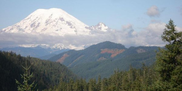 Mount Rainier is the tallest volcanic mountain in the contiguous United States, and due to the...
