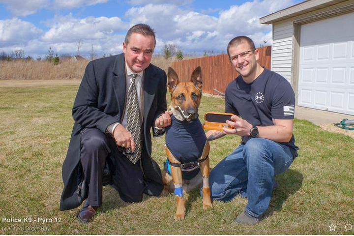 "Green Bay Mayor Jim Schmitt presents K-9 Pyro and his handler—Officer Scott Salzmann—with a very rare ""Key to the City"" for his heroic action and for his service to the Green Bay community.