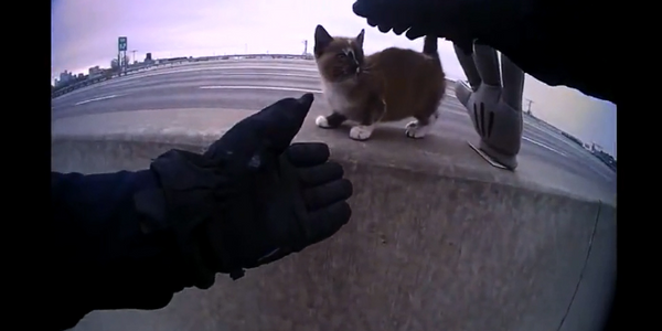 An officer with the North Kansas City (MO) Police Department coming to the rescue of a tiny...