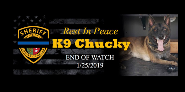 """K-9 """"Chucky"""" was struck by gunfire as the dog was attempting to subdue a subject who opened fire..."""
