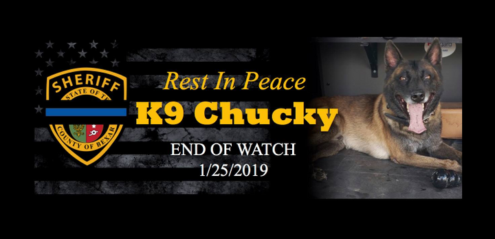 "K-9 ""Chucky"" was struck by gunfire as the dog was attempting to subdue a subject who opened fire on police who had pursued the man for nearly 30 minutes.