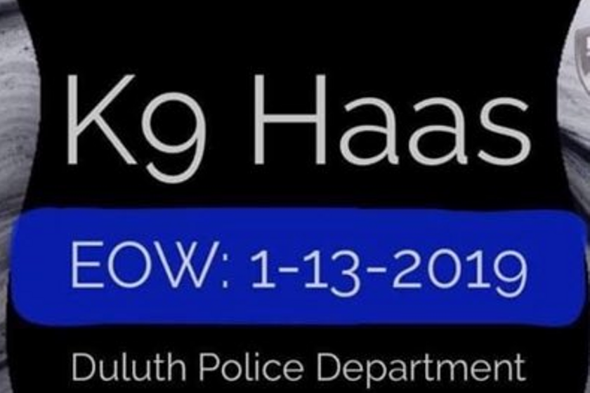 K-9 Haas—a three-year-old Belgian Malinois—was reportedly struck by gunfire and killed.