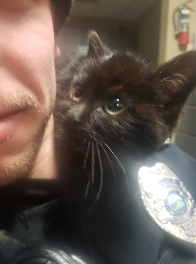 An officer with the Platteville Police Department has adopted a kitten he had rescued from a ditch filled with snow.