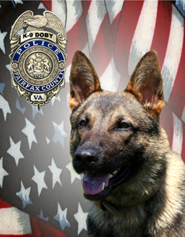 K-9 Doby was born in Hungary and had just turned two years old, police say. He had been a member of the Fairfax County PD since March 2018.