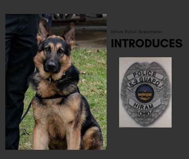 Officers with the Hiram (OH) Police Department will soon have the assistance of a pure bred German Shepherd born in July 2017 in the Czech Republic.  - Image courtesy of Hiram PD / Facebook.