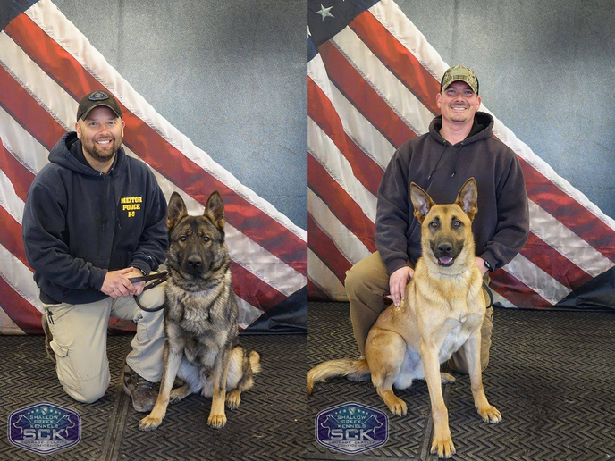 K-9 Achilles is a year-and-a-half old German Shepherd-Belgain Malinois mix from Hungary. Achilles will be working with Officer Wurgler.K-9 Bak will be working with Officer Mackey. He is a year-and-a-half old purebred Shepherd from the Czech Republic.  - Image courtesy of Mentor PD / Facebook.