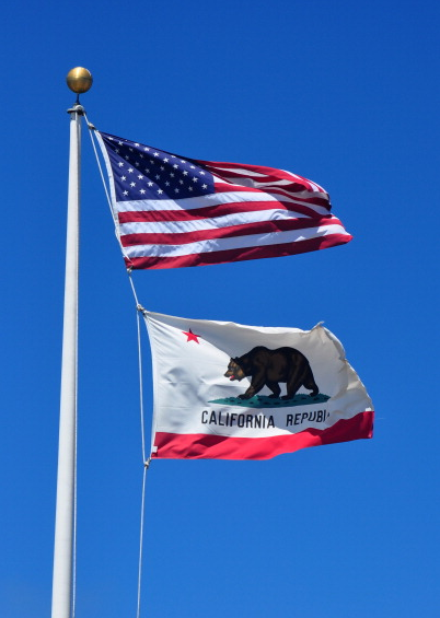 California Assembly Approves Use-of-Force Reform Bill