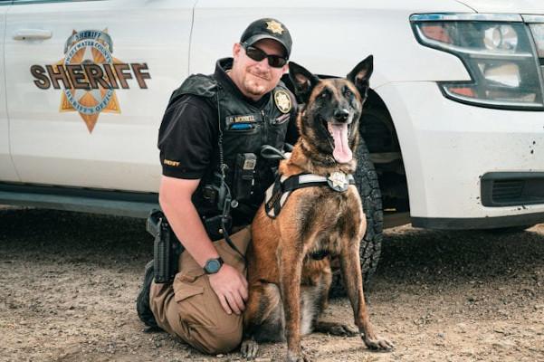 Deputy Derek Morrell and K-9 Jara (pronounced Yara) found a missing boy.  - Photo: Sweetwater County (WY) Sheriff's Office