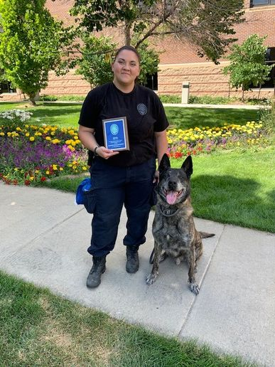 A K-9 with the Broomfield Police Department recently retired from duty after seven years of service with the agency, and a large group of his K-9 colleagues showed up to the ceremony marking the occasion.