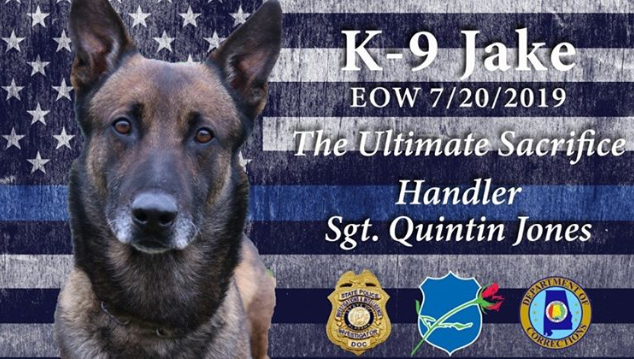 K-9 Jake collapsed during a contraband search inside Staton Correctional Facility Thursday.  - Image courtesy of Alabama Department of Corrections / Instagram.
