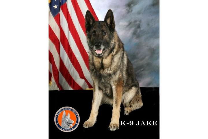 K-9 Jake passed away peacefully. 
