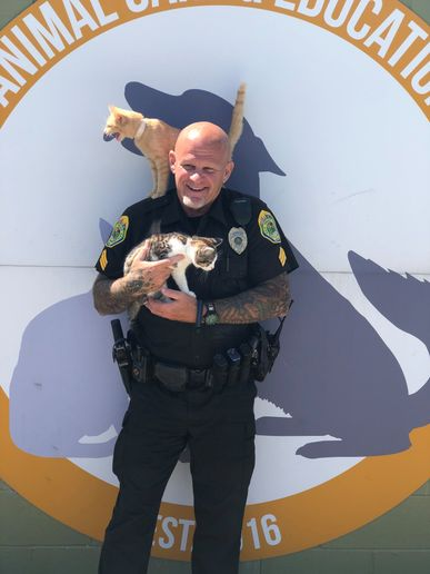 "The Muncie Police Department posted on Facebook, ""Pictured below is Sergeant Mace. Did you know that Sergeant Mace loves cats? He quickly volunteered to hold (or attempt to hold) these two cats.""