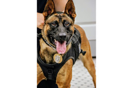 Virginia Department Welcomes Newly Sworn Officers, K-9