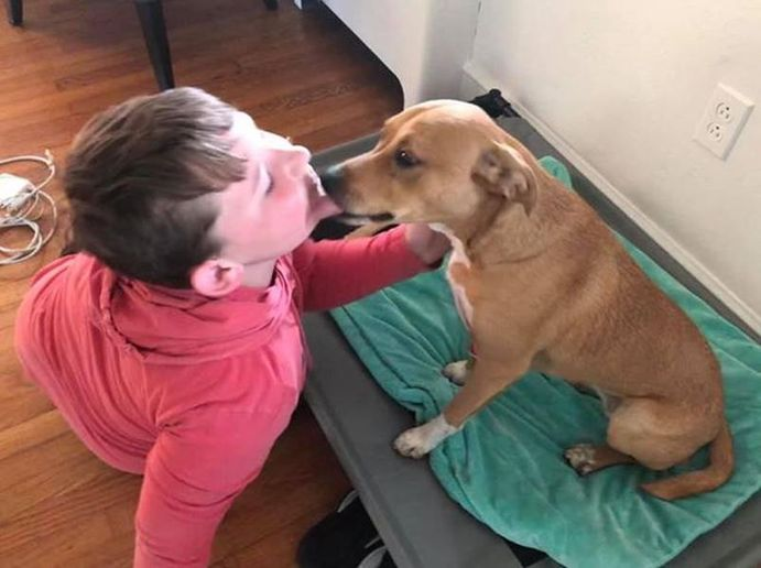 Eleven-year-old Trey Snow was reunited with his puppy Riley thanks to the efforts of a Nash County (NC) Sheriff's deputy. (Photo: Nash County SO)  -