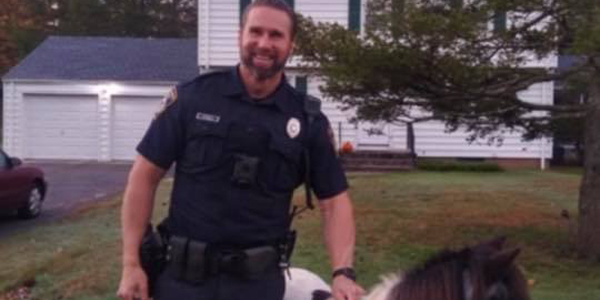 An officer with the North Haven (CT) Police Department managed to take into custody a small...