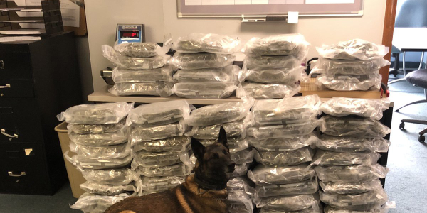 K-9 Thoris being credited with the location and seizure of 60 pounds of marijuana at a traffic...