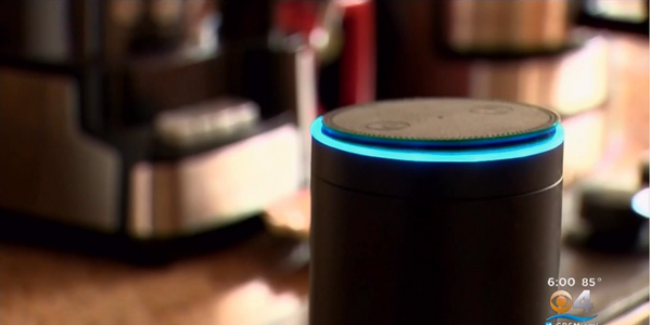 Florida Detectives Hope Amazon Echo Recordings Could Solve Bizarre Murder Case