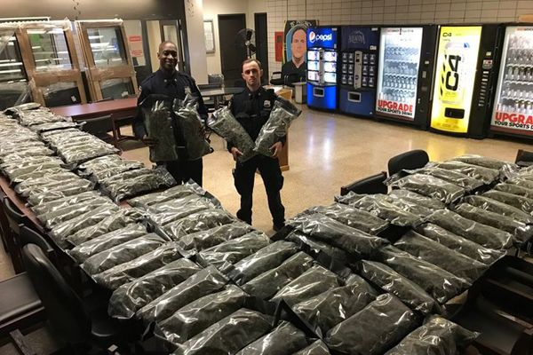 The New York Police Department posted an image on social media of two officers holding what appear to be giant bags of marijuana along with two tables covered in similar bags. However, the haul was legally-grown hemp, not marijuana. - Image courtesy of NYPD / Twitter.