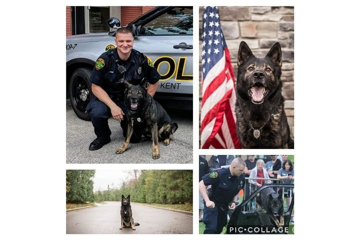 The Kent (OH) Police Department announced on social media on Tuesday that a beloved K-9 named Iron has retired from duty after five years of service. - Image courtesy of Kent PD / Facebook.