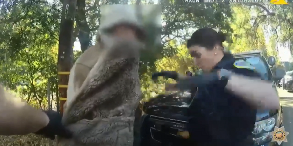 Video: California Officer Startled by Lizard Leaping from Suspect's Coat