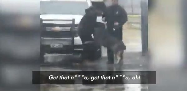 Video: K-9 Helps Take Down Assailant Who Punched Officer in Face