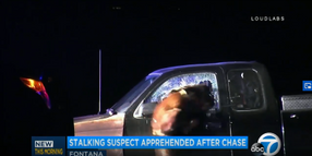 Video: California K-9 Jumps Through Pickup Truck Window to Take Down Suspect