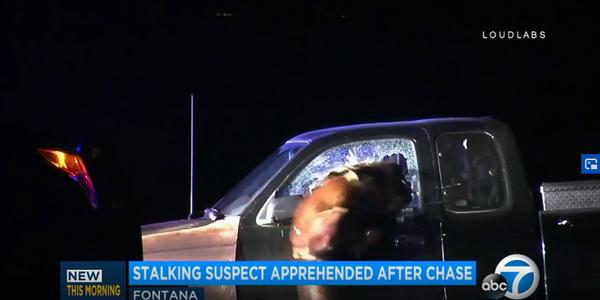 Video: California K-9 Jumps Through Pickup Truck Window to Take Down Suspect