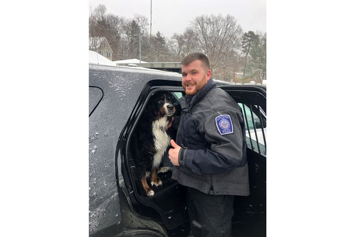 Officer Brian Casey with the wet—but happy—Tuukka in the back of his patrol vehicle following the dog's rescue from icy waters.  - Image courtesy of Littleton PD.