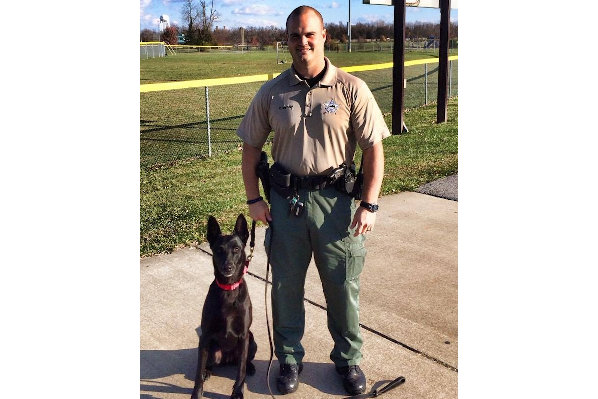 Kentucky Sheriff's K-9 Killed in Crash