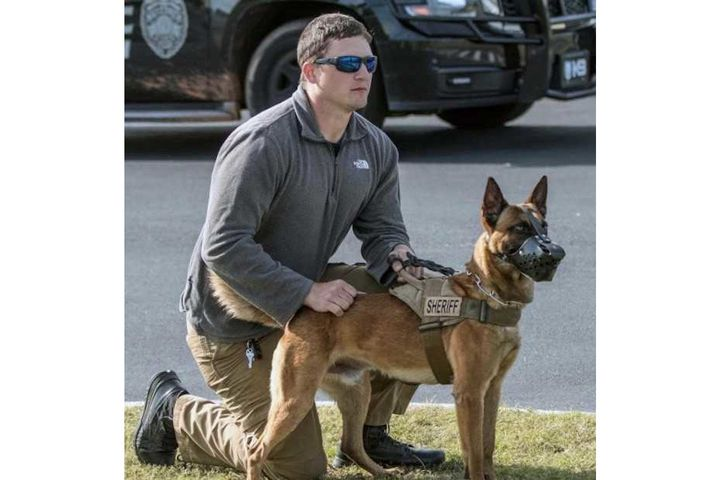 Cullman County, AL, sheriff's deputy Adam Clark was critically injured in a patrol vehicle wreck Tuesday. His K-9 Figo was also injured. (Photo: Cullman County SO) -