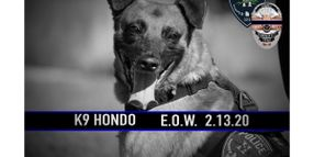 Utah K-9 Shot and Killed in Pursuit of Fugitive