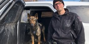 Canadian K-9, Handler Find 3-Year-Old Girl Who Had Wandered into Woods