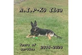 South Carolina Department Mourns Death of K-9