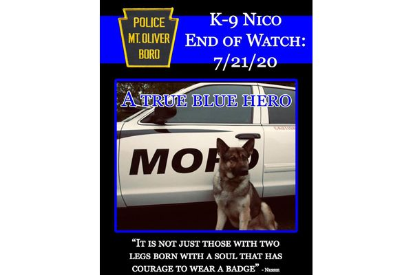 The Mt. Oliver (PA) Police Department are mourning passing of K-9 Nico on its Facebook page. - Image courtesy of Mt. Oliver (PA) Police Department / Facebook.