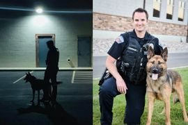 Utah K-9 Shot in Face Expected to Recover