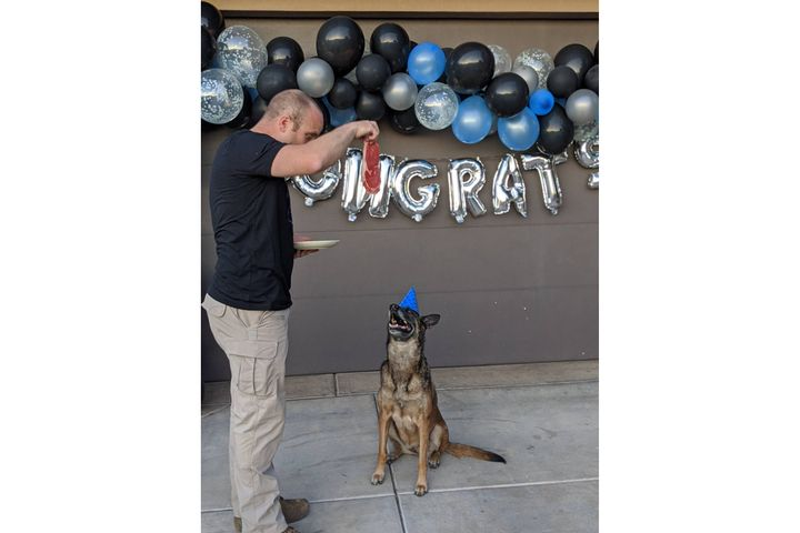 K-9 Paige with the Hurricane City (UT) Police Department has bid farewell to two-legged colleagues at the department during a sendoff celebration at which she was given a large steak instead of cake. - Image courtesy of Hurricane City (UT) Police Department / Facebook.