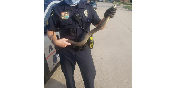 "An officer with the North Richland Hills (TX) Police Department has been labeled a ""snake..."