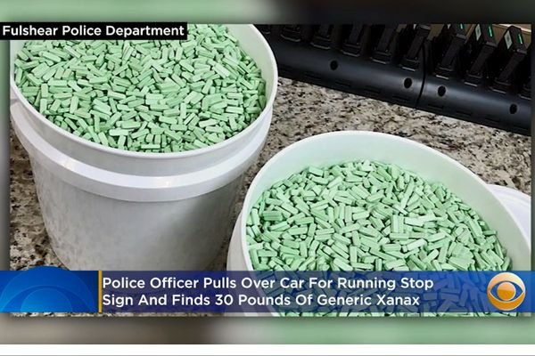 An officer with the Fulshear City Police Department stopped the vehicle for a minor traffic violation. Upon investigation, the officer discovered a haul of 30 pounds of illegal Alprazolam (the generic form of Xanax) with an estimated street value of up to $645,000. - Screen grab of news report.