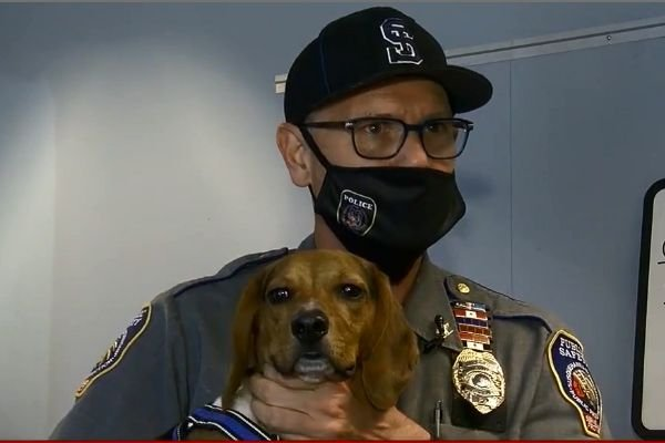 "K-9 ""Augie"" will be a ""station dog"" where will receive care and love from officers 24/7/365. - Screen grab of news report."