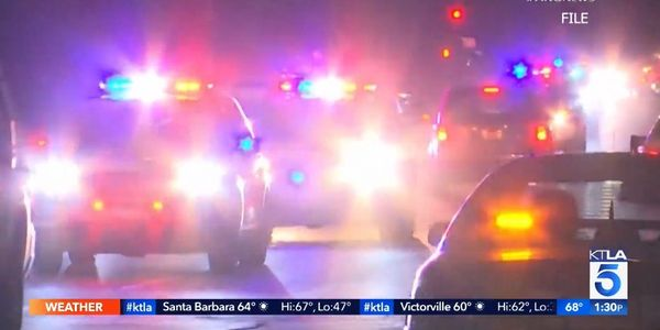 With Homicide Rate Rising After Defunding, LAPD Asks for $100 Million Increase in Budget